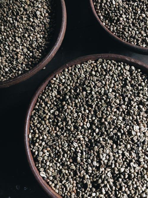 Foto stok gratis agrikultura, aromatik, biji-bijian, gelap
