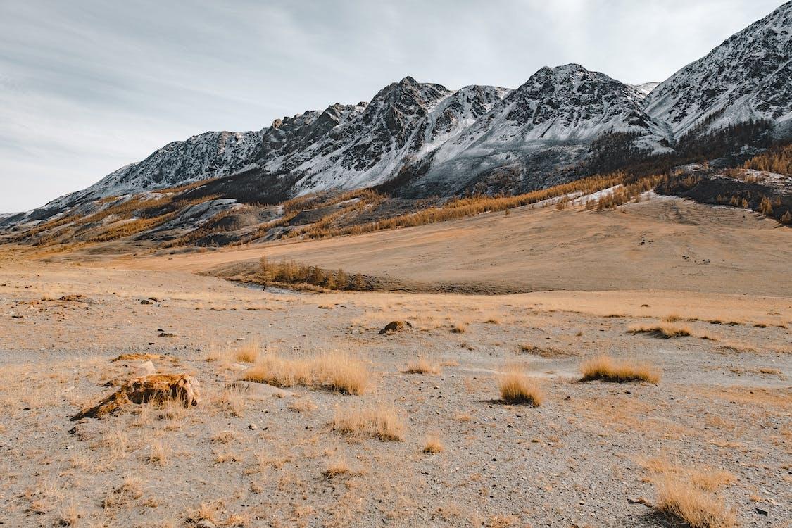 White and Black Mountain Alps