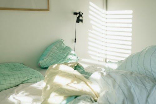 คลังภาพถ่ายฟรี ของ หมอน, ห้องนอน, เตียง, แสงแดด