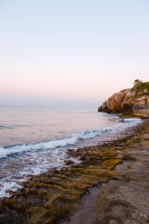 Δωρεάν στοκ φωτογραφιών με άμμος, γνέφω, γραφικός, θάλασσα