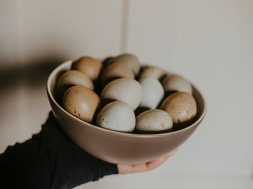 Person Holding Bowl of Eggs