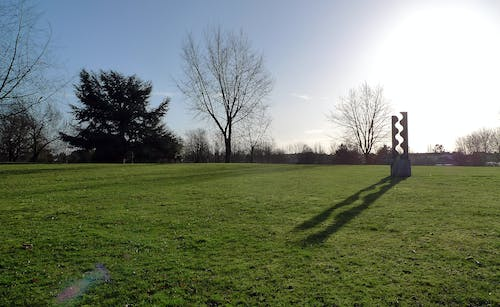 Free stock photo of long shadow, morning, park, recreation ground