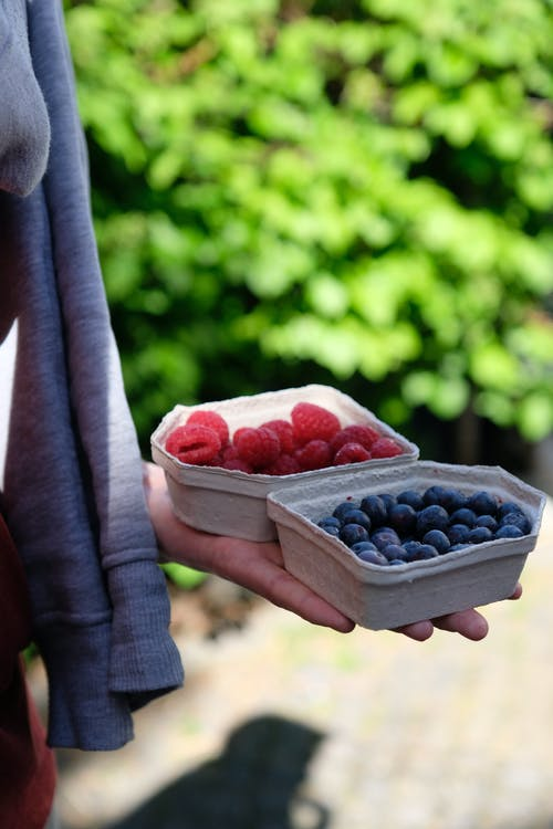 Selective Focus Photo of Person Holding Molded Pulp Containers with Blueberries and Raspberries