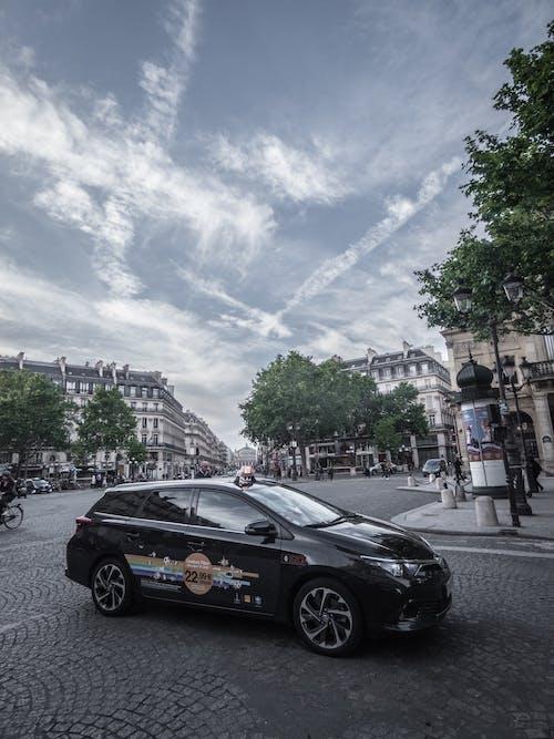 Photos gratuites de arbres, architecture, automobile, automobiles