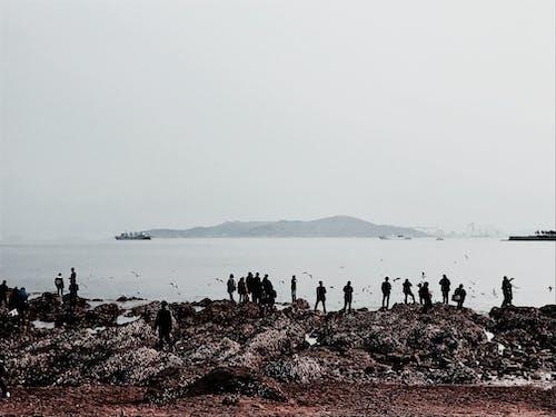 Tourists on rocky coast with mountains on horizon