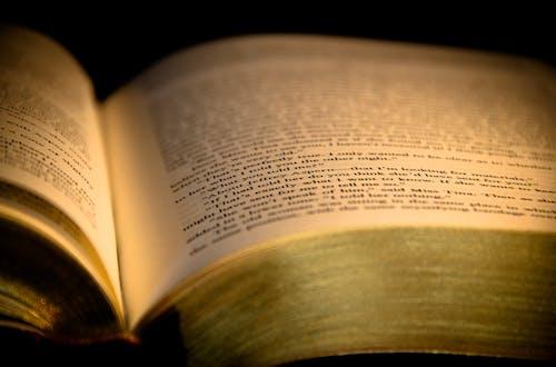Foto d'estoc gratuïta de Bíblia, biblioteca, capítol, concentrar-se