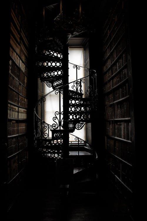 Foto stok gratis Arsitektur, bagian dalam, bayangan, buku-buku