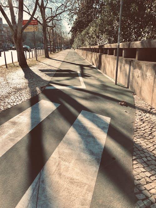 Imagine de stoc gratuită din apus, bicicletă, Lisabona, luminile orașului
