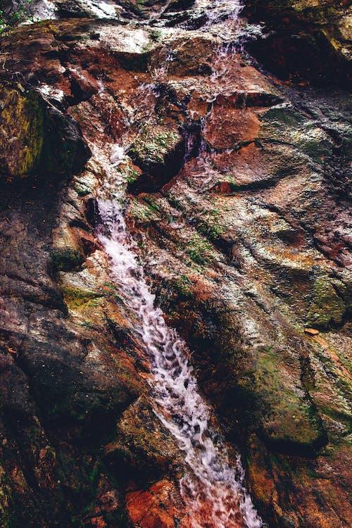 Foto stok gratis air, alam, aliran, basah