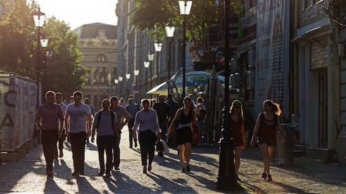 Безкоштовне стокове фото на тему «будівлі, Вулиця, дерева, жінки»