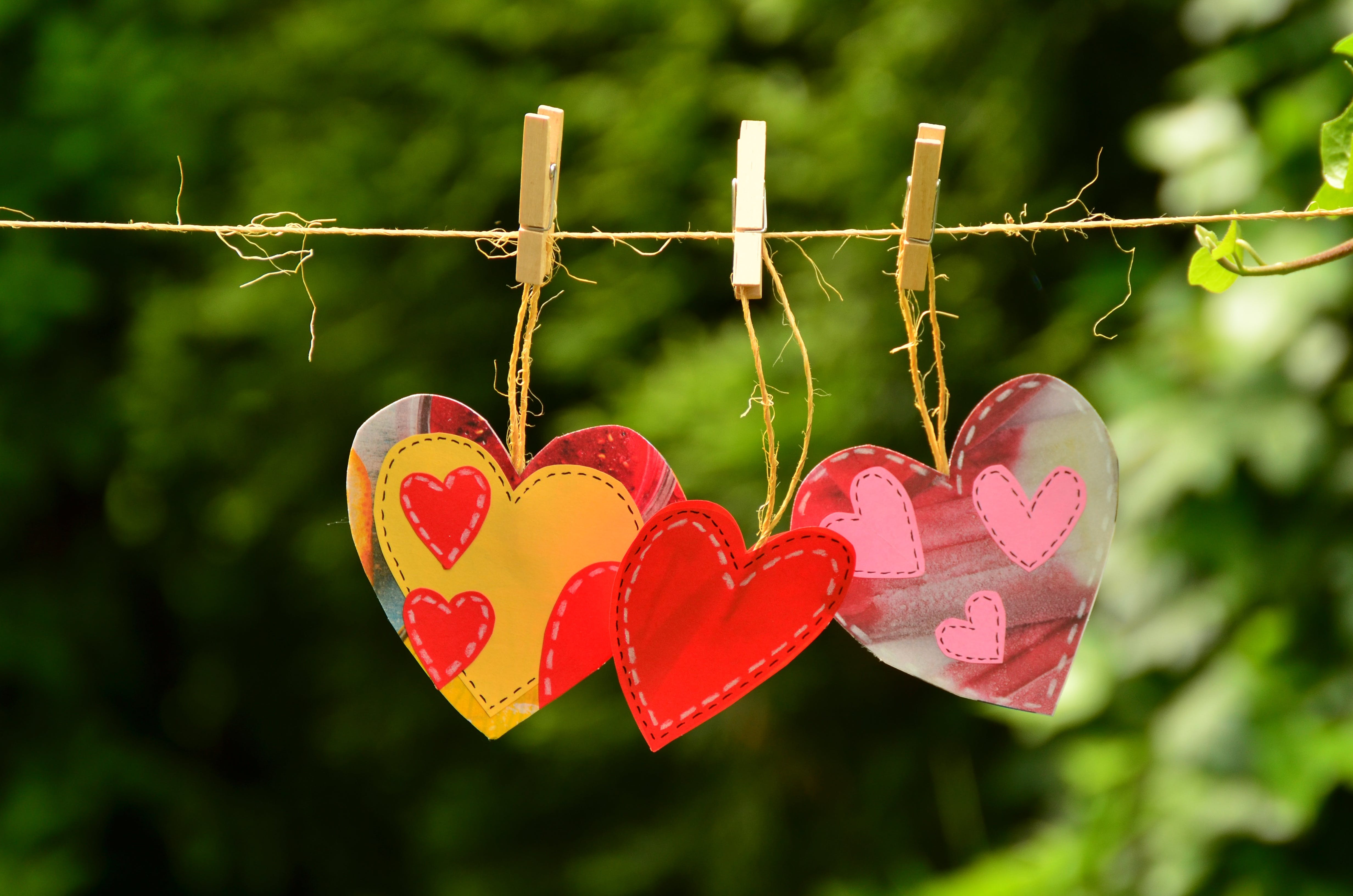 Close-up of Heart Shape Hanging on Tree