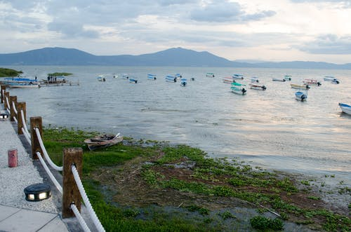 Free stock photo of lake, lakeside, motorboats, village