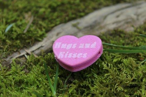 Безкоштовне стокове фото на тему «великий план, декоративний, день Святого Валентина, емоція»