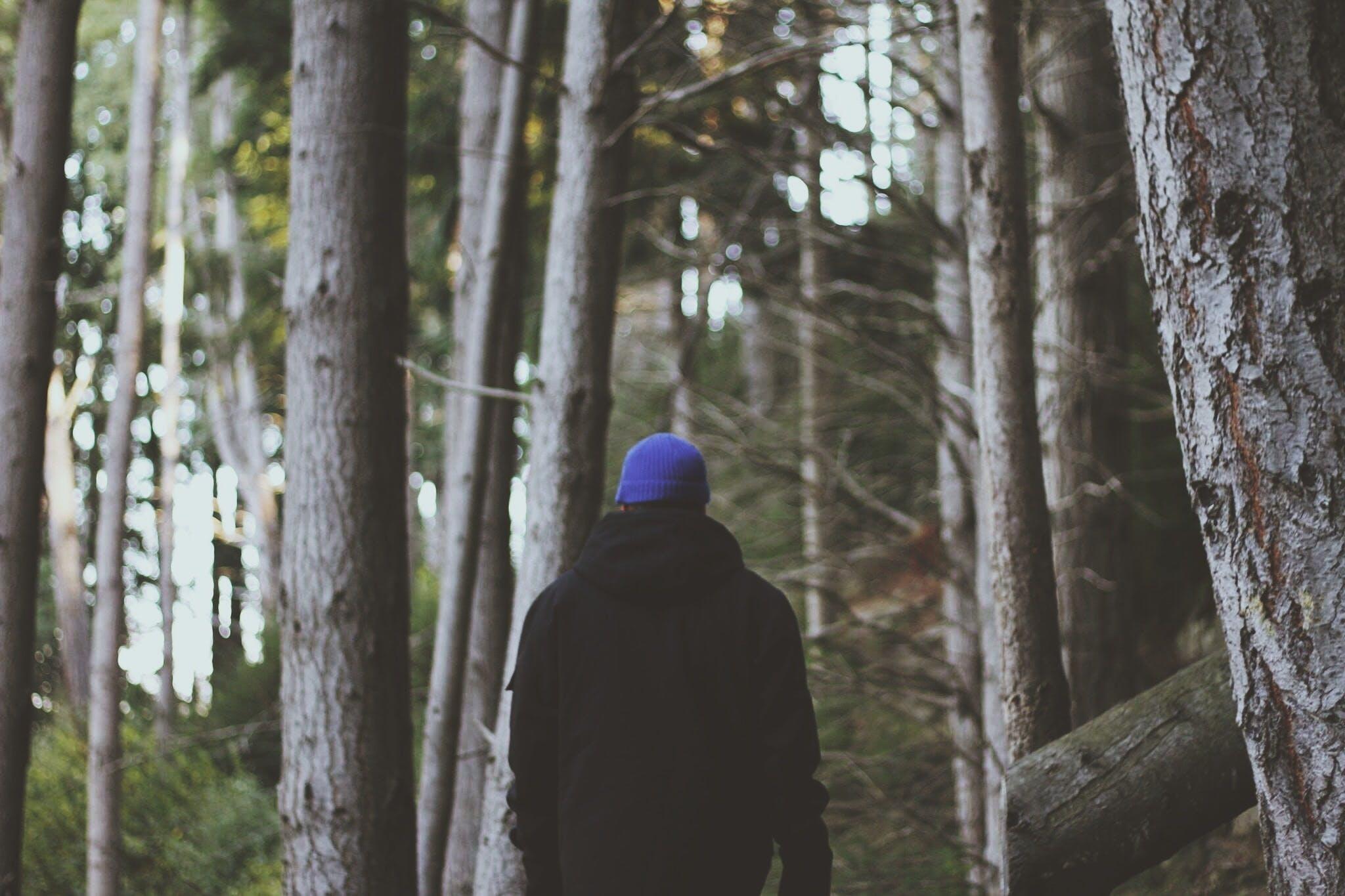 Kostenloses Stock Foto zu bäume, draußen, erwachsener, fashion