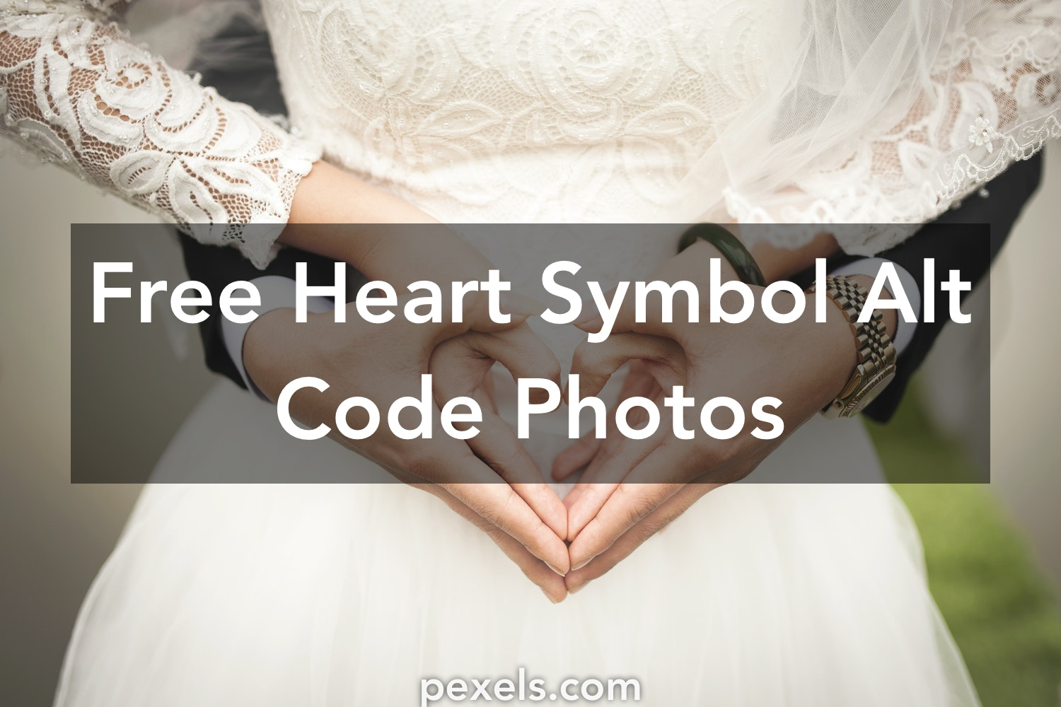 1000 Engaging Heart Symbol Alt Code Photos Pexels Free Stock Photos