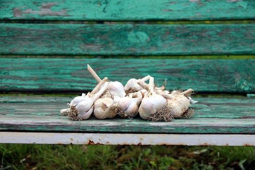 마늘, 벤치의 무료 스톡 사진