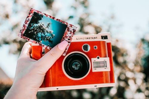 Imagine de stoc gratuită din aparat de fotografiat, aparat foto instant, imagine, lomo