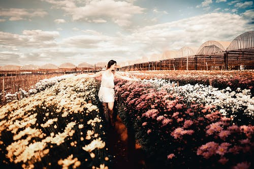 Photo Of Woman Standing In A Flower Field