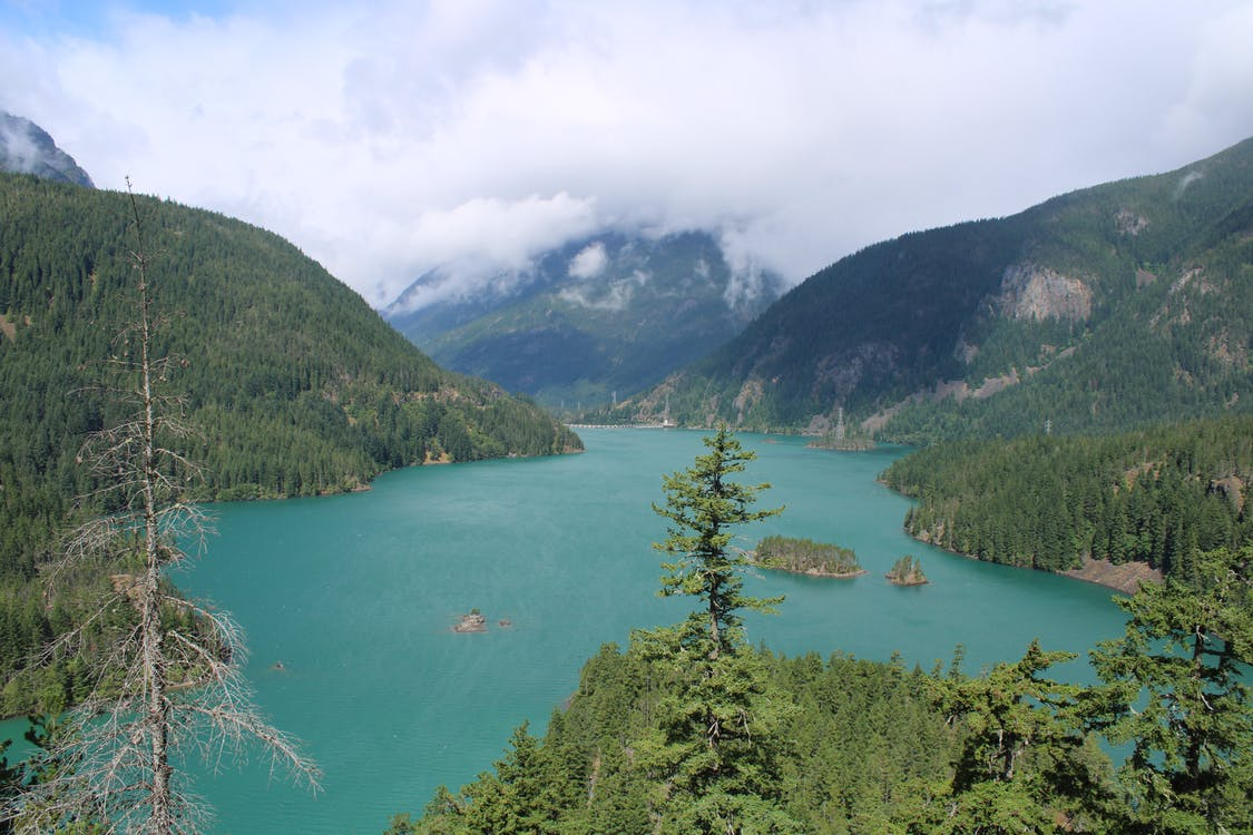 Scenic View Of Lake During Daytime