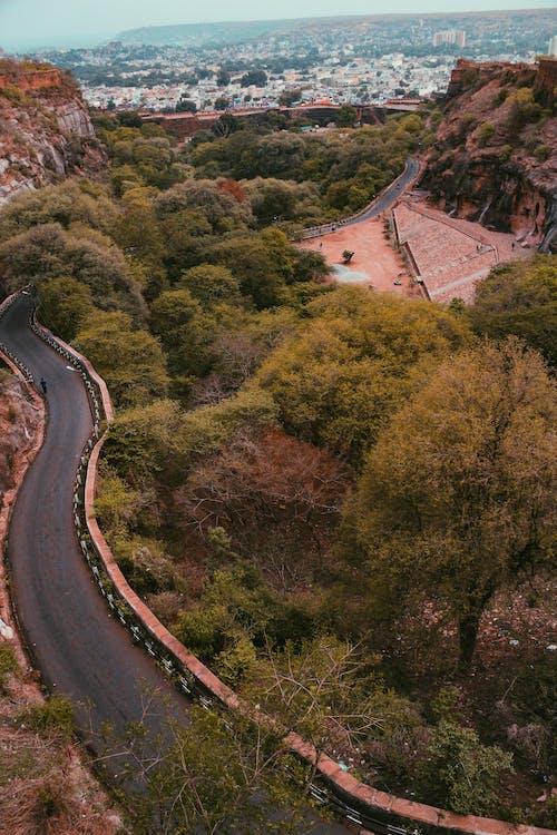 Foto d'estoc gratuïta de a l'aire lliure, arbres, arquitectura, carretera
