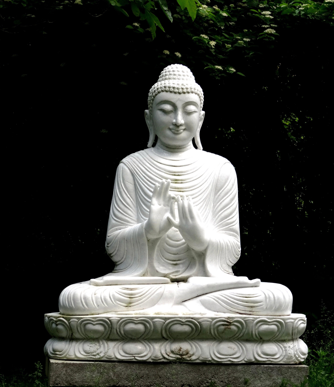 Statue of Buddha Statues