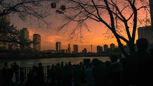 Δωρεάν στοκ φωτογραφιών με Ανατολή ηλίου, αυγή, δύση του ηλίου, οπίσθιος φωτισμός