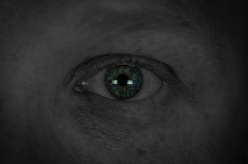 Free stock photo of beautiful eyes, bright eyes