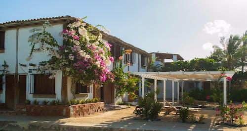 Ilmainen kuvapankkikuva tunnisteilla arkkitehtuuri, koti, rakennus, talo