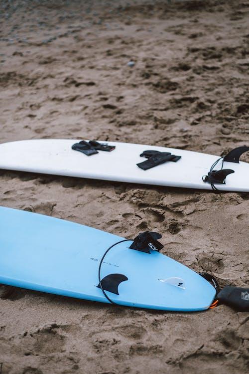 Kostenloses Stock Foto zu meeresküste, sand, strand, surfbretter