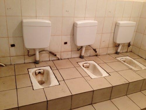 Ảnh lưu trữ miễn phí về bụi bẩn, dơ bẩn, phòng vệ sinh, trường cũ