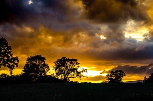Fotos de stock gratuitas de al aire libre, dorado, noche, nubes
