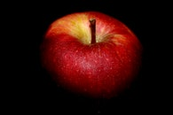 food, healthy, apple
