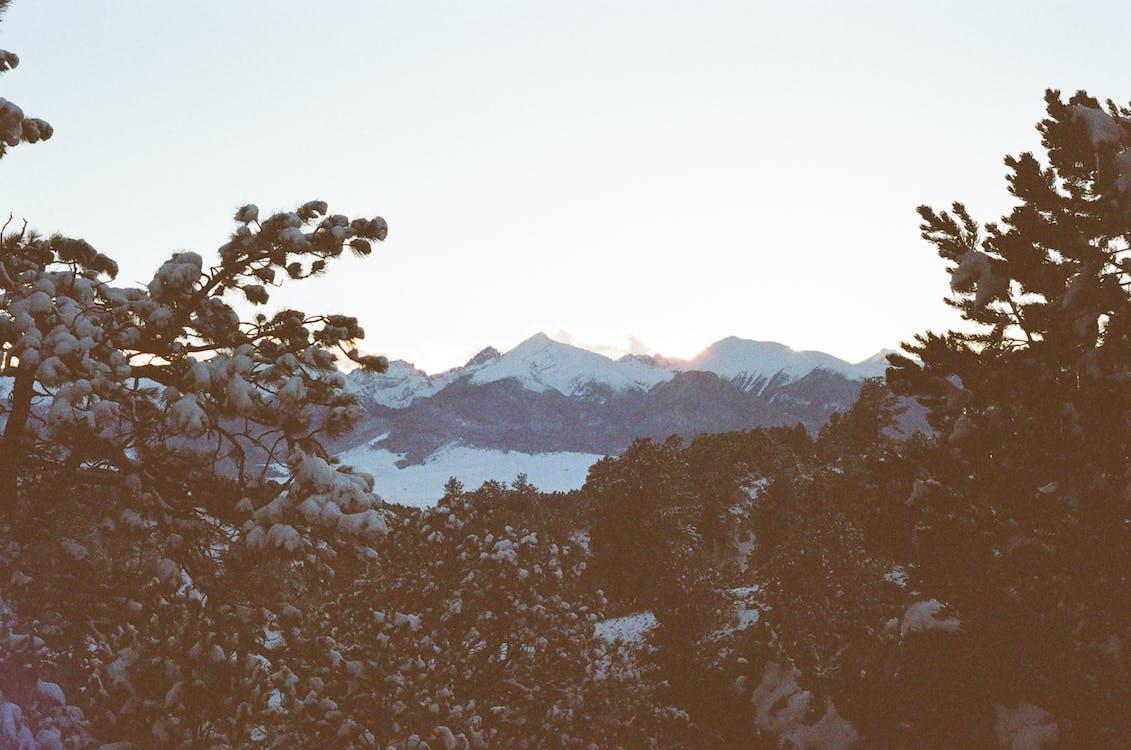 Gratis arkivbilde med daggry, fjell, skumring