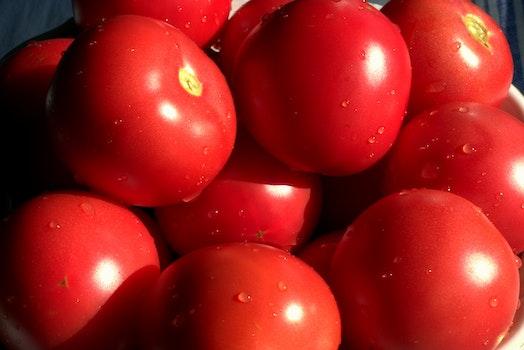 Kostenloses Stock Foto zu essen, gesund, gemüse, rot