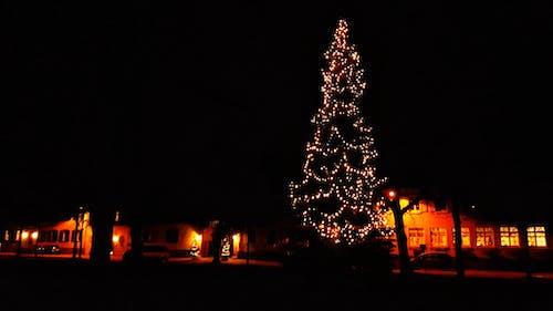 Ảnh lưu trữ miễn phí về dunkel, lichterketten, weihnachten, weihnachtsbaum