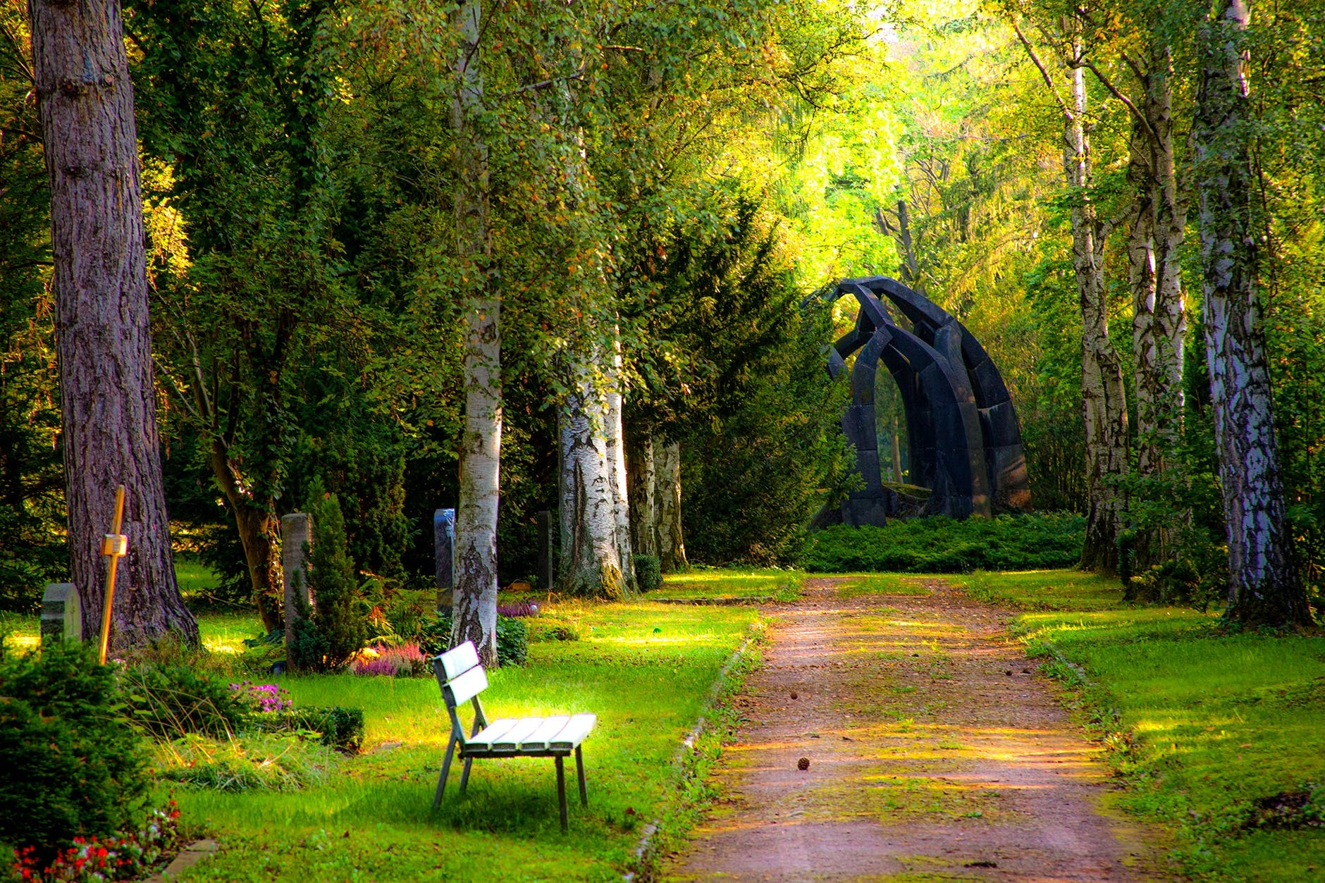 Garden with trees and bench