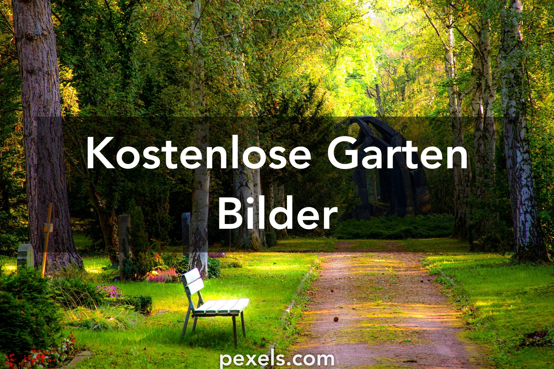 Garden Japanischer Garten Bilder Kostenlos