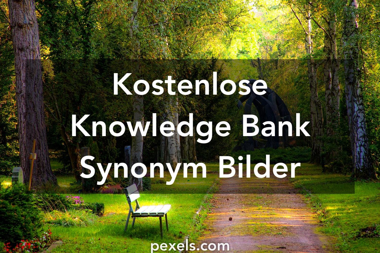 500 Knowledge Bank Synonym Fotos Pexels Kostenlose Stock Fotos