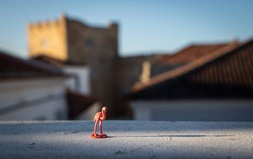 açık hava, beton, biblo, bulanıklık içeren Ücretsiz stok fotoğraf