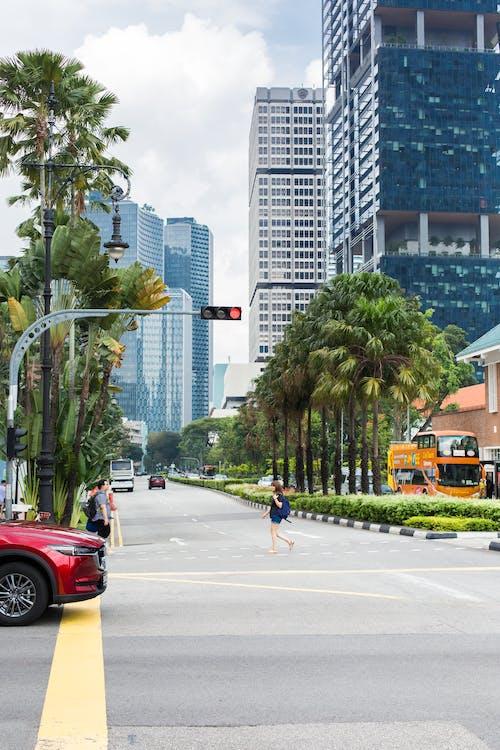 Foto profissional grátis de centro da cidade, cidade, edifícios, estrada