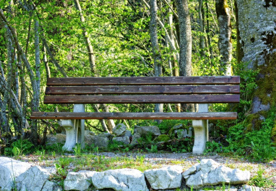 New free stock photo of bench, landscape, nature