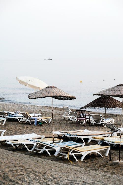 Gratis arkivbilde med hav, havkyst, kyst, paraplyer