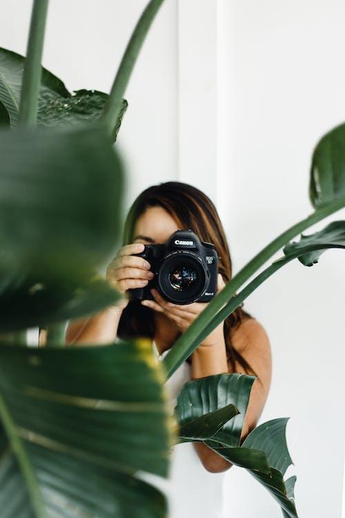 Foto d'estoc gratuïta de adult, càmera, creixement, dona