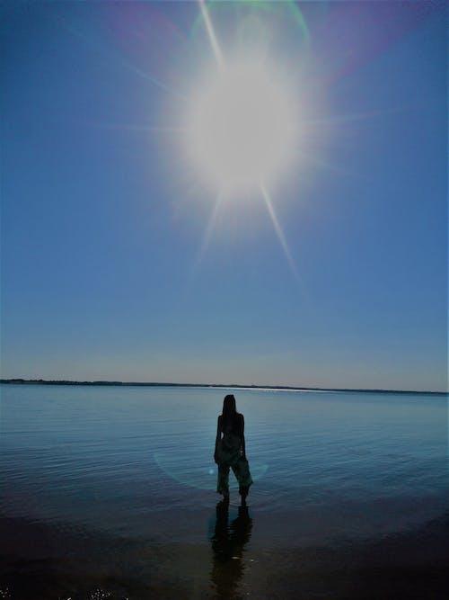 Základová fotografie zdarma na téma dáma, denní, denní světlo, horizont