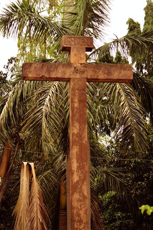 Brown Concrete Cross Near a Palm Tree