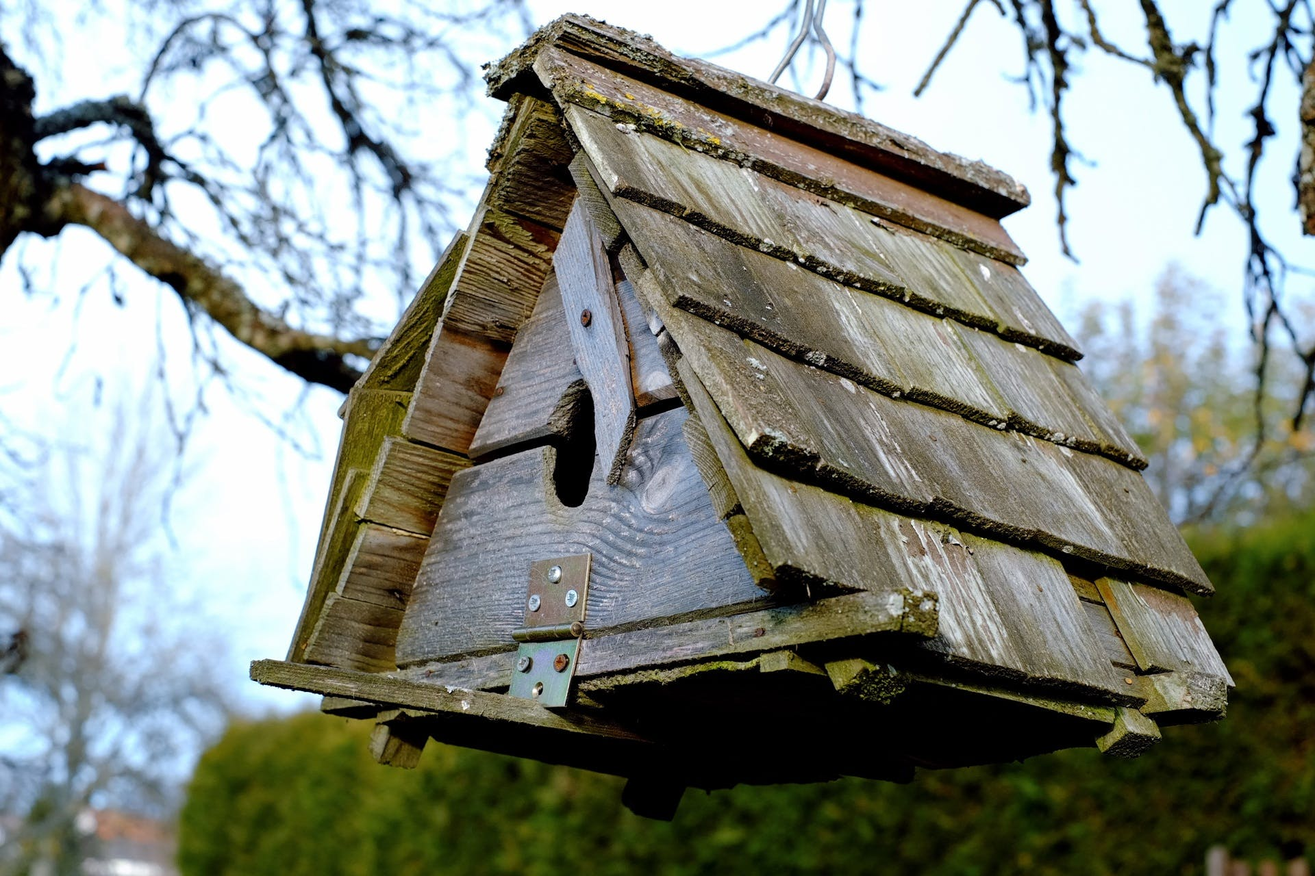 Low Angle View of Birdhouse Against Sky