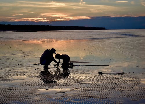 Foto stok gratis bayangan hitam, flat lumpur, matahari terbenam, pantai
