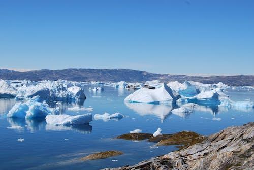 Photos gratuites de arctique, fondre, froid, icebergs