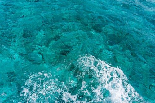 Immagine gratuita di acqua, caraibico, isole cayman, mare