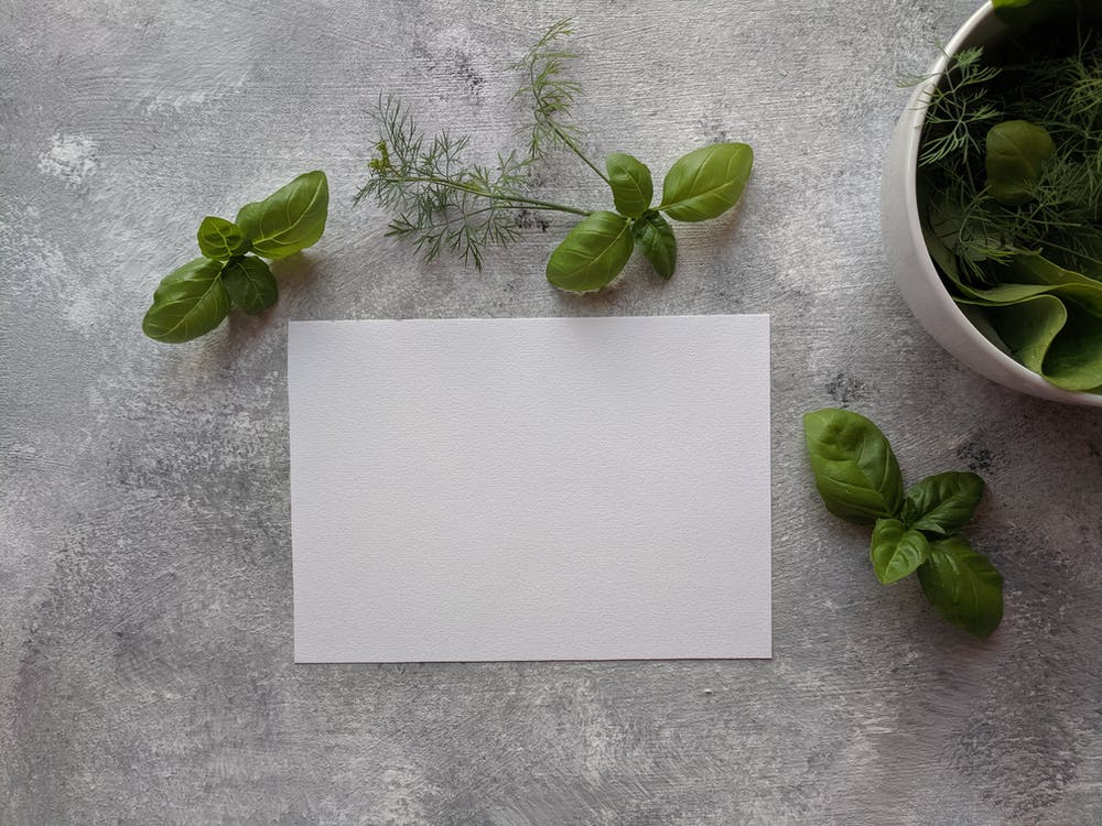 Top View Photo of Paper Near Basil Leaves